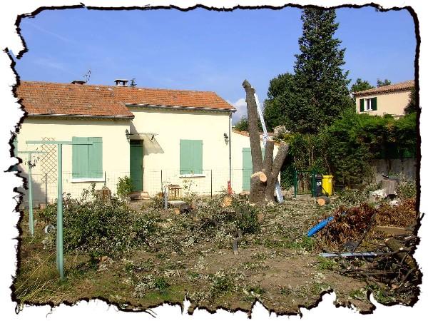 abattage arbre brignoles