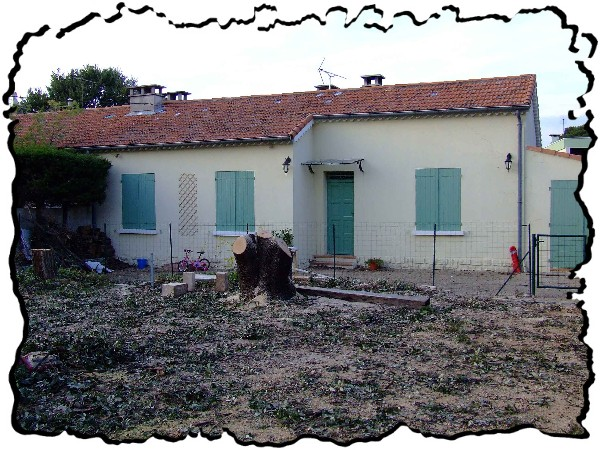 abattage arbre saint maximin
